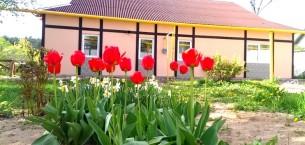 Дом в Минске по улице Геологической