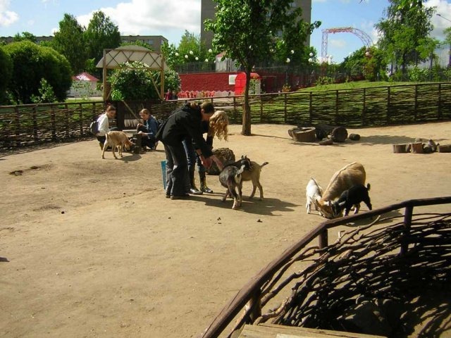 Zoopark_cont