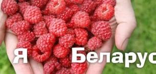 Отдых в Белоруссии. Чем он хорош?
